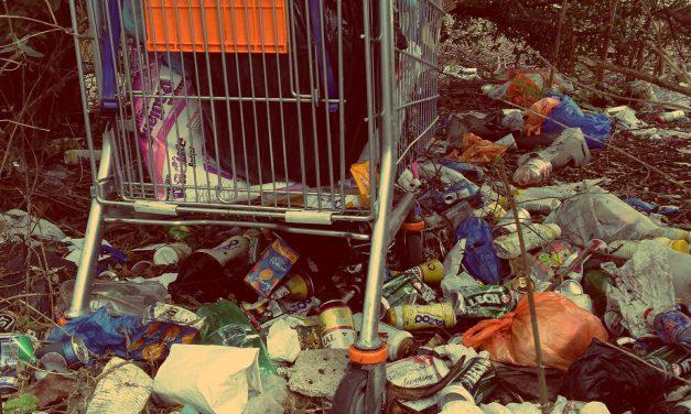 Megújulhat a hazai hulladékgazdálkodási ágazat