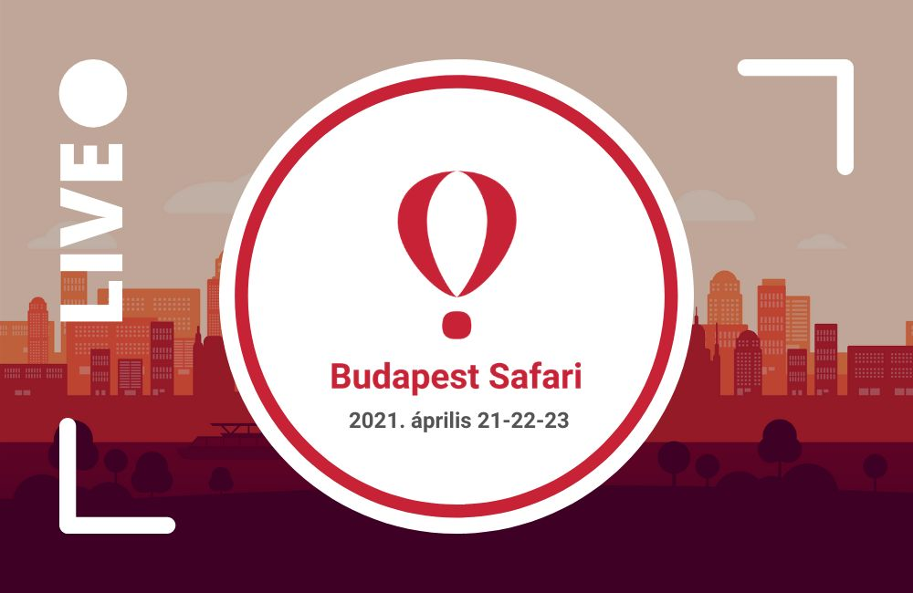 Budapest Startup Safari