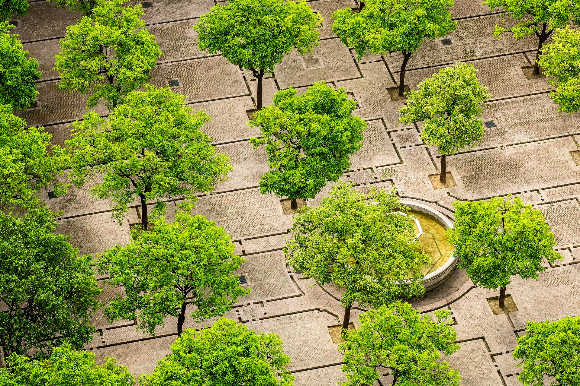 Több zöldfelületre lenne szükség a városokban