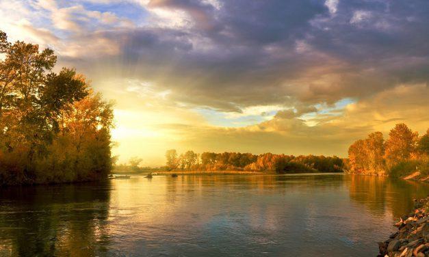 Elkészült Magyarország ökoszisztéma-alaptérképe