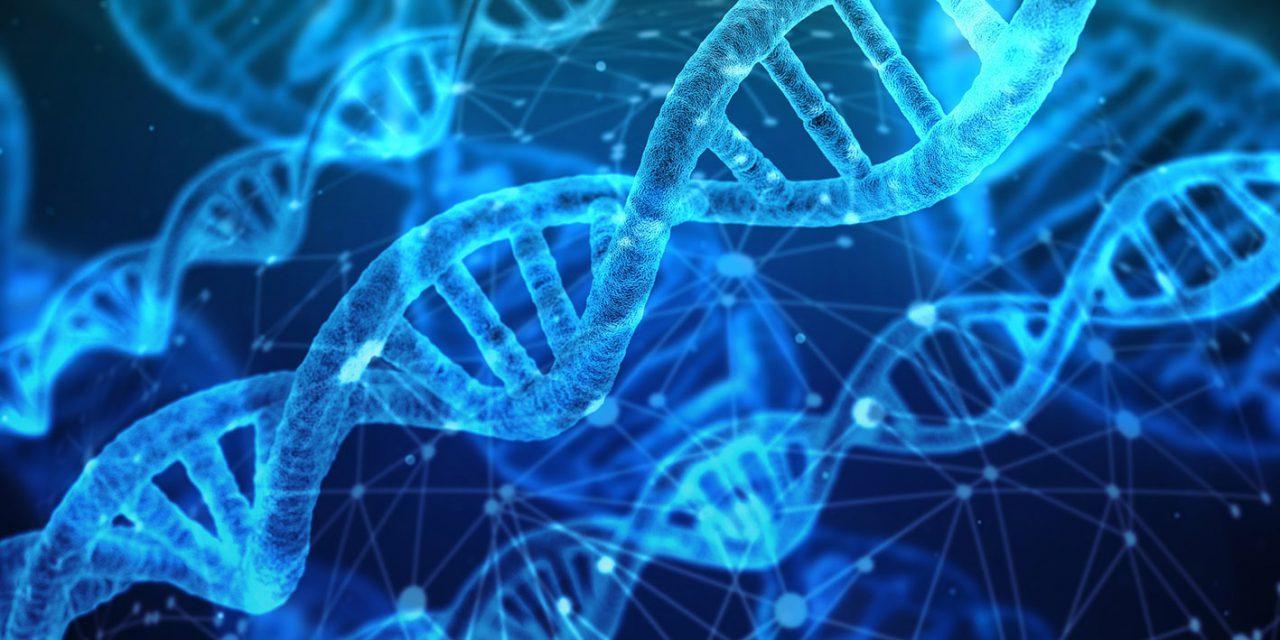 Megvan az első magyar koronavírus genom
