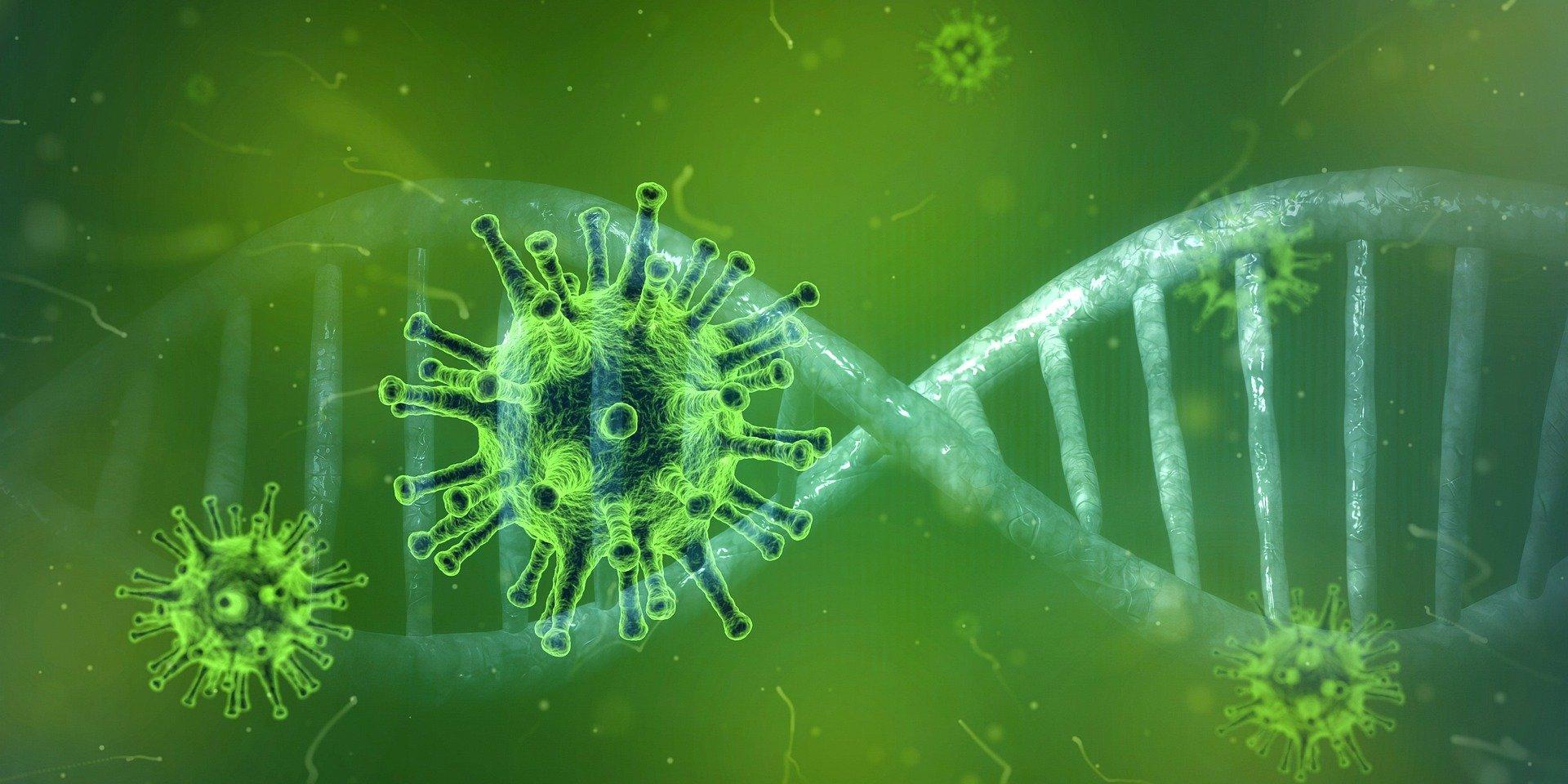 A magyar gyógyszerkutatók úgy találnak fogást a koronavírus fehérjéin, ahogy a telefon keresi a wifihotspotokat