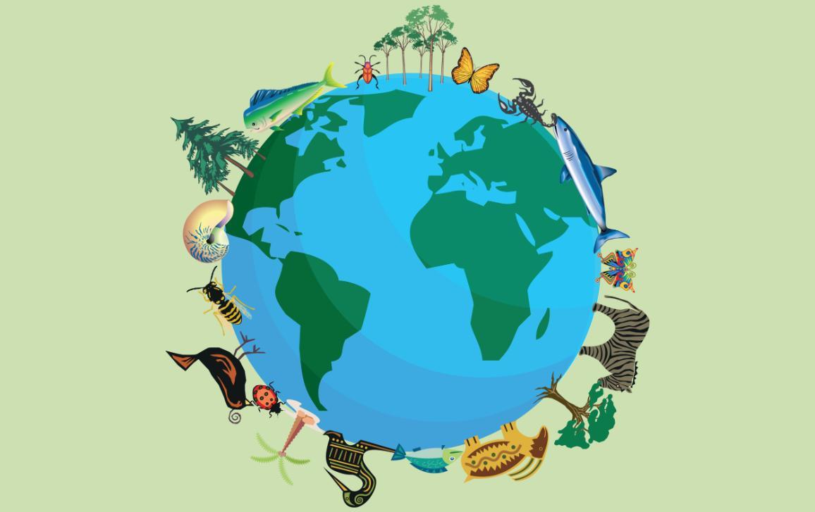 Az európai akadémiák a biodiverzitás végzetes pusztulására figyelmeztetnek